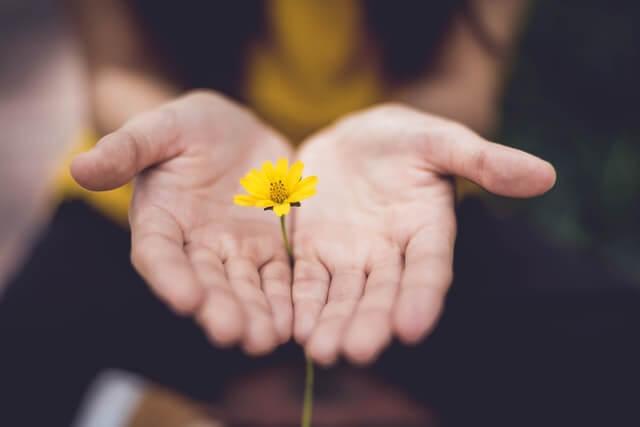 Affäre verzeihen und eine zweite Chance geben